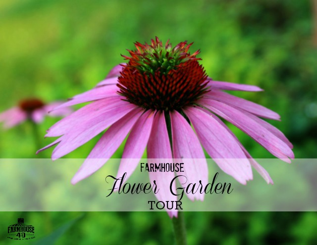 Flower-Garden-Tour
