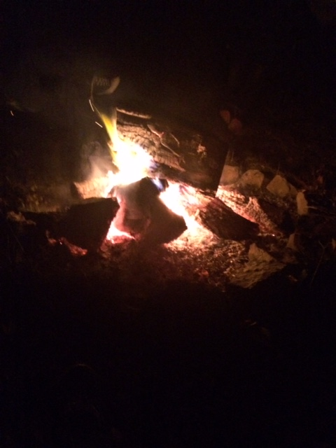 bonfire with family