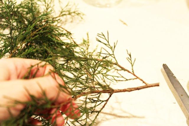 cedar-mini-wreath