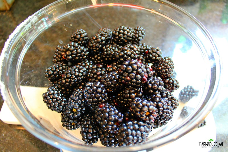 blackberries for cobbler