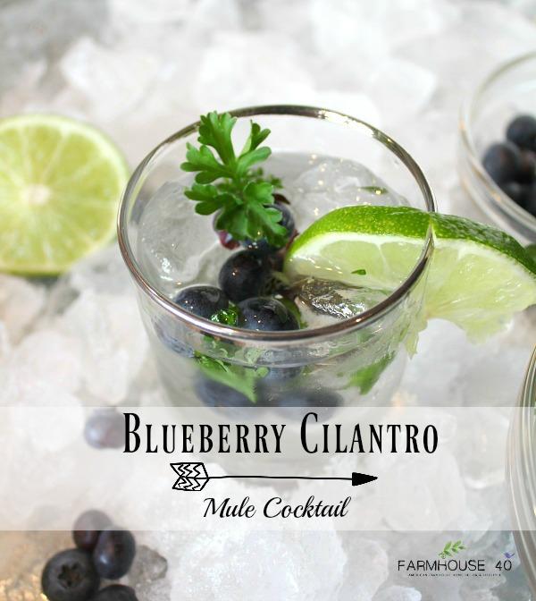 Blueberry Cilantro Mule Cocktail