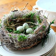 bird-nest-spring-handmade