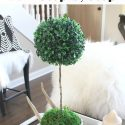 Topiary To Make Now