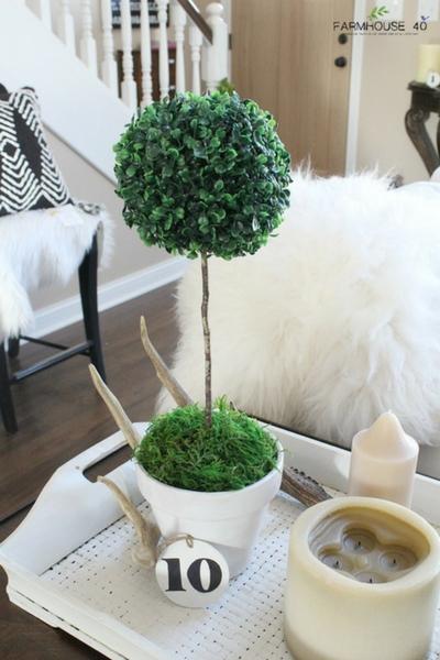 topiary pot