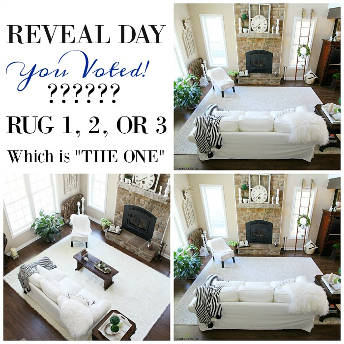 Rug Selection Reveal Day