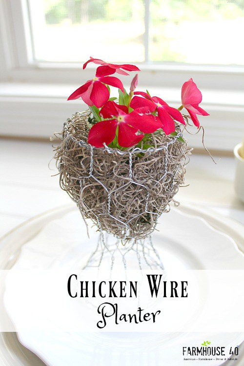 chicken-wire-planter